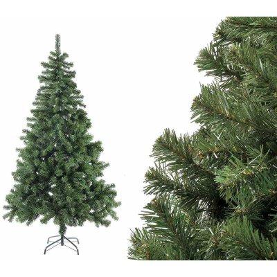 Sapin de Noël Stelvio H 180 - 220 Branches De base